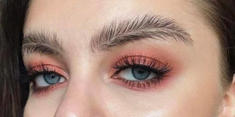 landscape-1491927295-feather-brows.jpg
